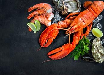 Call for Artists and Craftsmen, Treasure Coast Seafood Festival – Vero Beach